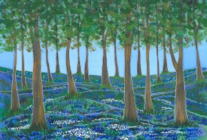 Bluebell Woods at Cleatop