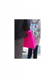 Stalking Pink